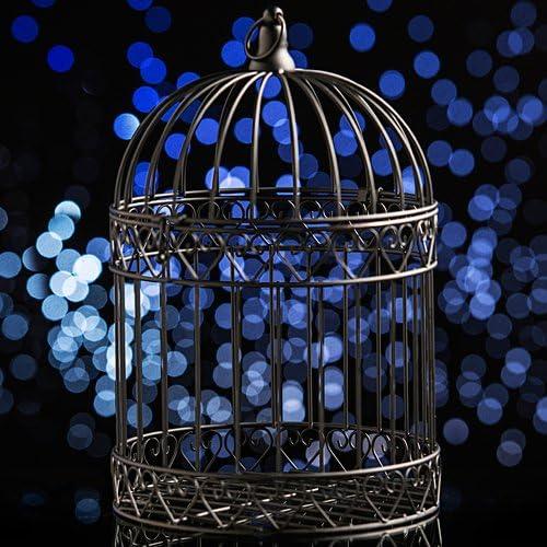 Wedding-Cards Decorative Black Bird Cage Centerpiece-Dress