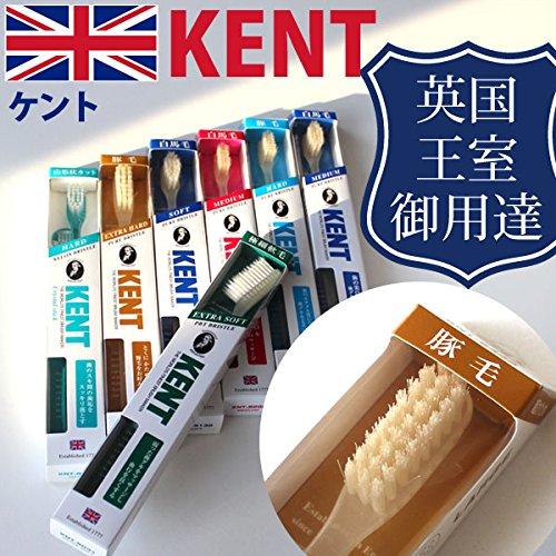 ジム調停する尽きるケント KENT 豚毛 ラージヘッド 歯ブラシKNT-9433 超かため 6本入り しっかり磨ける天然毛のラジヘ