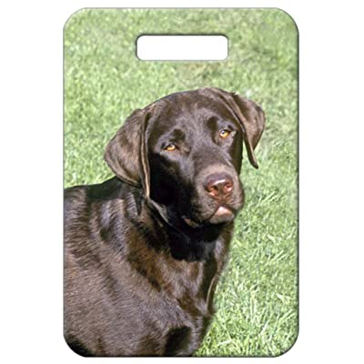 Canine Designs Set of 2 Labrador Retriever Luggage Tags