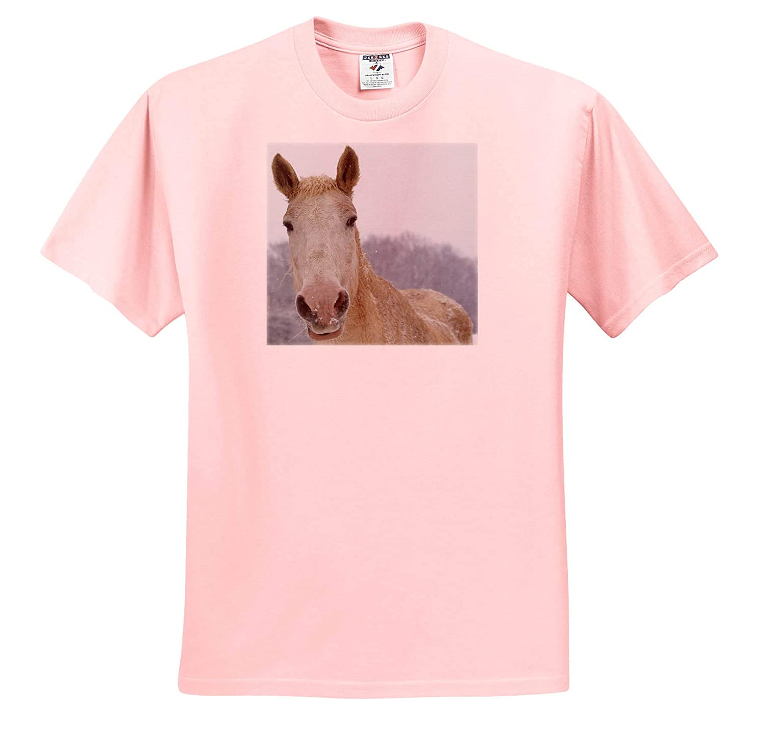 - T-Shirts 3dRose Stamp City Animals Close-up Photograph of a White Horse Enjoying The Winter Snow