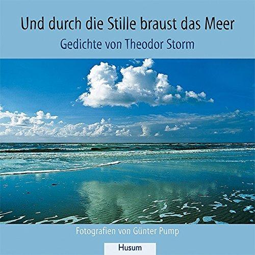 und-durch-die-stille-braust-das-meer-gedichte-von-theodor-storm