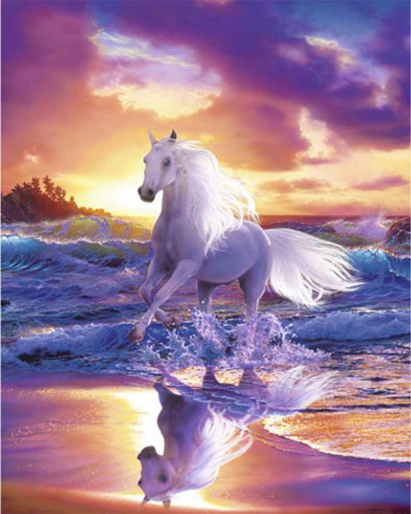 Pintar por Numeros Paisaje de playa caballo blanco DIY Cuadro al óleo con números para Kit de Pintura al óleo Digital para Adultos y niños de Lienzo decoración para el hogar 40x50cm Sin Marco
