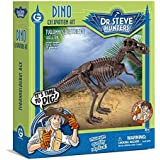 Geoworld - Cl1663k - Dino Excavation Kit - T Rex