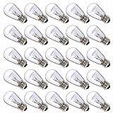 Deneve DNV-200-10110 Clear Glass S14 Incandescent Light Bulbs for E26, E27 Sockets, 11 Watts, 25 Pack
