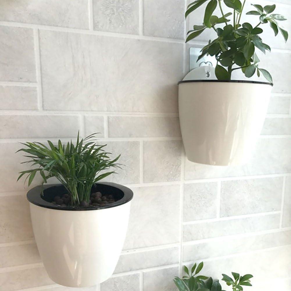 Tiansiangjjeu Maceta de pl/ástico para Colgar en la Pared Absorbente de Agua autom/ático Regalo decoraci/ón del hogar