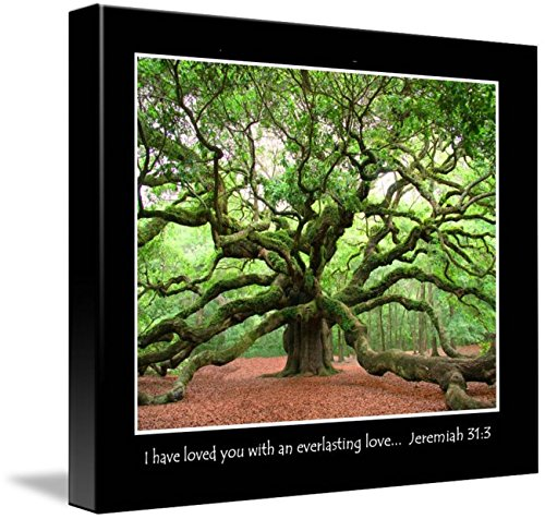 Wall Art Print entitled Angel Oak-Jeremiah Verse by Ken Rainwater | 44 x 36