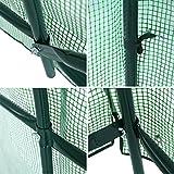 Songmics Folien Gewächshaus 9m² mit Fenster - 7