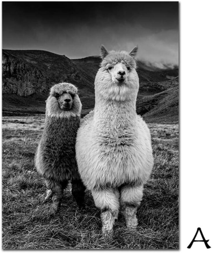 LGYLucky Alpaga Nordique Affiche Noir et Blanc Peinture de Toile peintures murales Peinture de limpression Art Animal Enfants pour la d/écoration de Chambre denfant,13x18cm No Frame