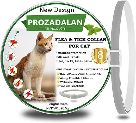 PROZADALAN Collar Antiparasitario para Gatos,Los aceites Esenciales Naturales Duran 8 Meses para el Tratamiento de pulgas, 35 cm de tamaño Ajustable e Impermeable (1pack): Amazon.es: Productos para mascotas