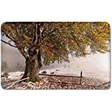 Memory Foam Bath Mat,Leaves,Birches of A Big Tree in the First Fall of Snow December Country Blizzard Frozen NaturePlush Wanderlust Bathroom Decor Mat Rug Carpet with Anti-Slip Backing,Multi