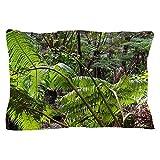 CafePress - Rainforest Ferns - Standard Size Pillow Case, 20''x30'' Pillow Cover, Unique Pillow Slip