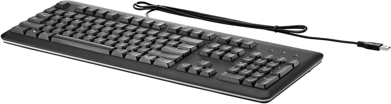 HP QY776AA - Teclado (USB, PC/server, oficina, 1.8 m, 422 x 164 x 24 mm, 900 g) Negro, QWERTZ (teclado alemán)
