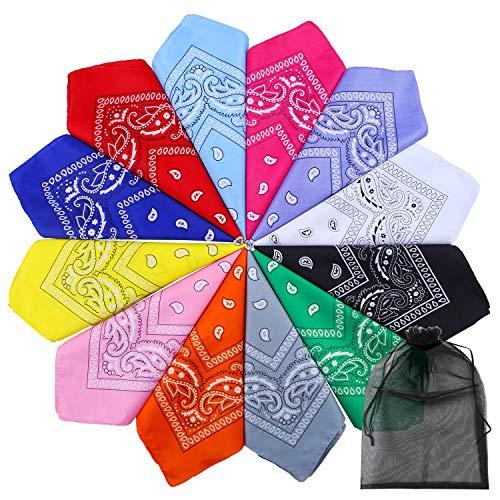 URATOT 12 Pack Novelty Bandanas Paisley Print Cowboy Bandana Handkerchiefs Head Wrap with Mesh Storage Bag, Assorted 12 Colors (Mixed 12 colors a, 12)