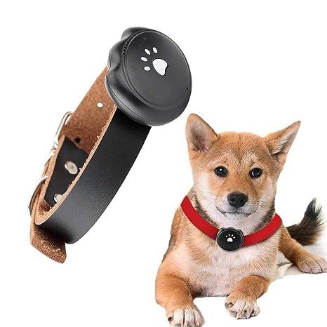 FXQIN Rastreador GPS para Mascotas, Collar localizador de ...
