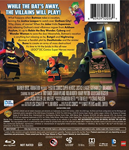 NIGHTWING ROBIN TEEN TITANS FIGURE MINI Building Blocks PLAY WITH LEGOS USA NIP