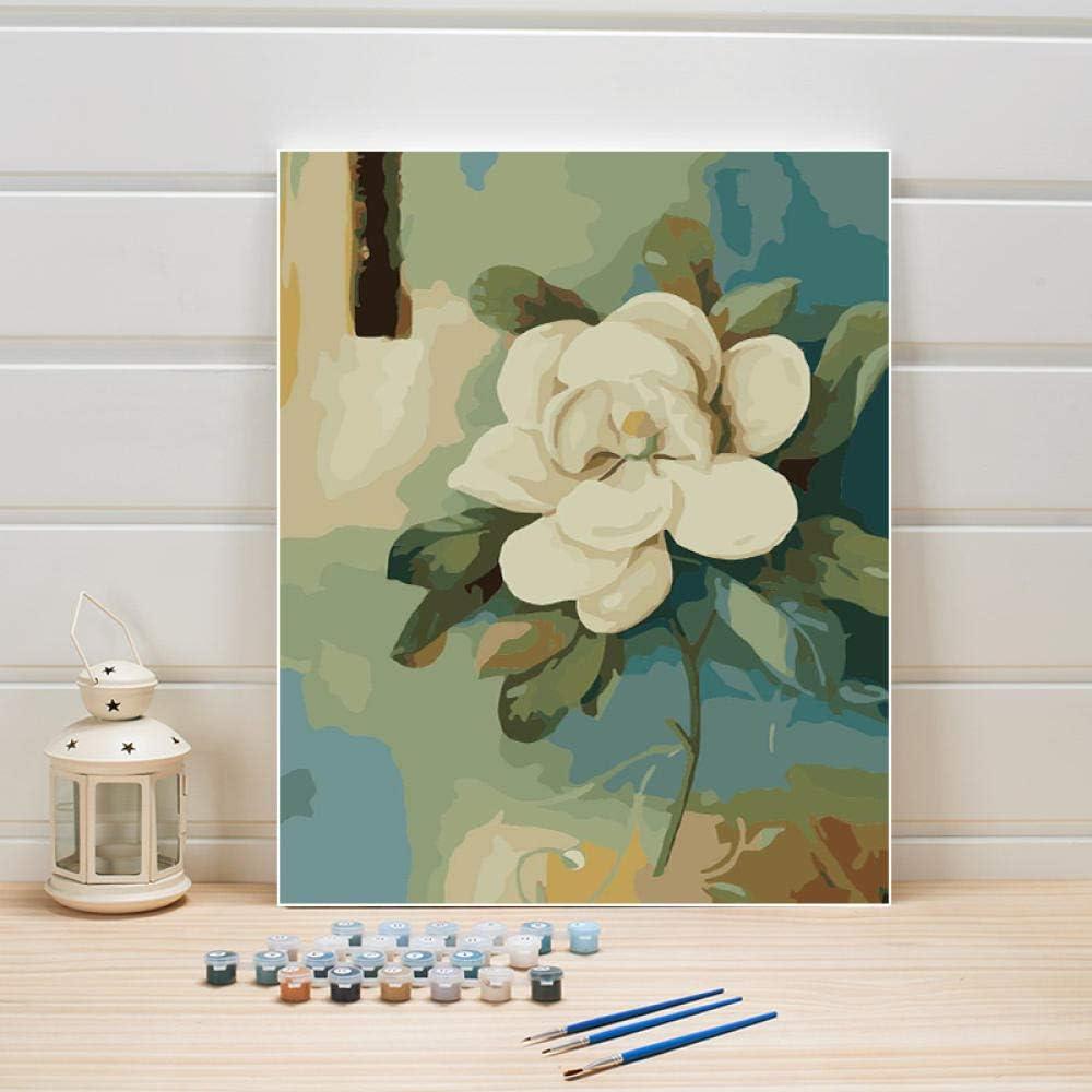 JieXi Mi binbin Pintar por número Flores DIY Lienzo Pintado a Mano Pinturas al óleo Acrílico Colorear Cuadros de la Pared para la Sala de Estar Decoración de la Boda 40x50cm-Con Marco