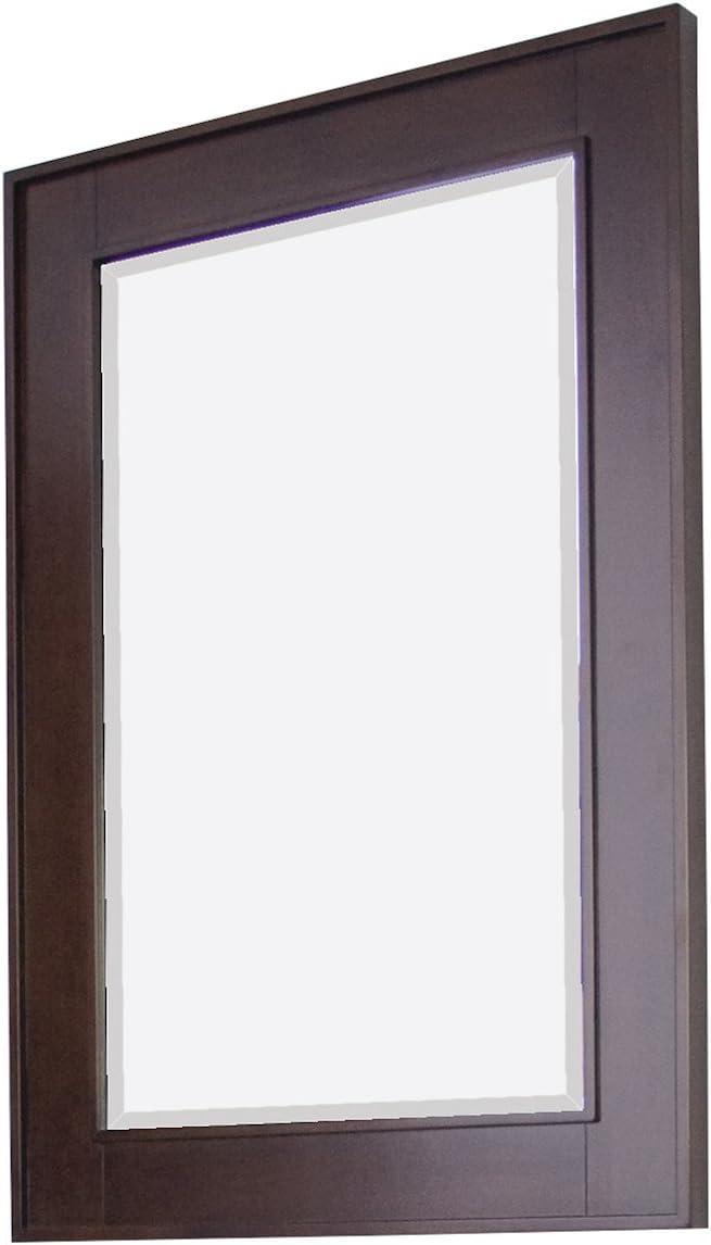 24-in. W x 32-in. H Transitional Birch Wood-Veneer Wood Mirror In Tobacco