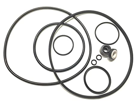 Amazon Com Pentair Challenger Pool Pump Seal O Ring Kit For All