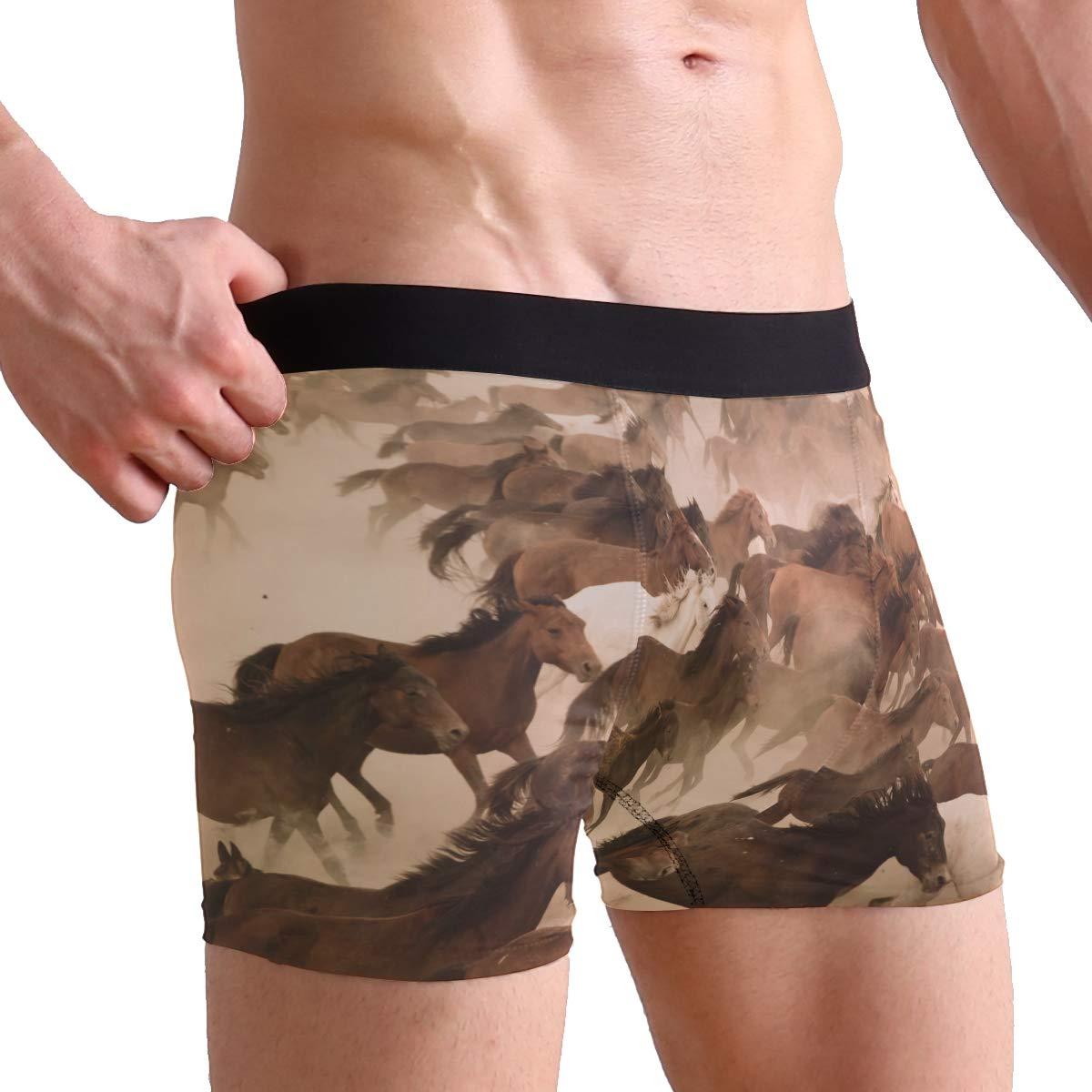 ZZKKO Running Horse Mens Boxer Briefs Underwear Breathable Stretch Boxer Trunk with Pouch S-XL