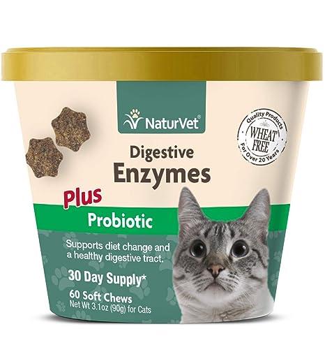 Amazon.com: naturvet enzimas digestivas Plus Probiótico para ...