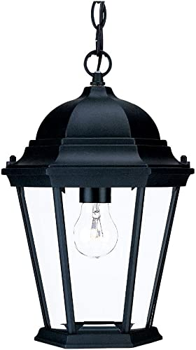 Acclaim 5206BK Richmond Collection 1-Light Outdoor Light Fixture Hanging Lantern, Matte Black