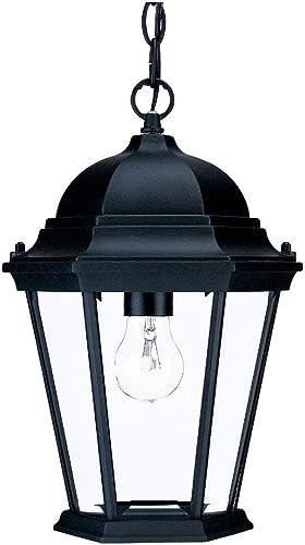 Acclaim 5206BK Richmond Collection 1-Light Outdoor Light Fixture Hanging Lantern, Matte Black
