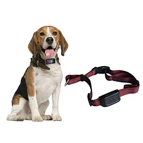Zimingu GPS seguimiento para mascota, largo tiempo en espera, minilocalizador para mascota, impermeable