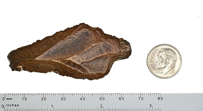 Amazon.com: Neanderthal hombre primitivo artefactos aterian ...