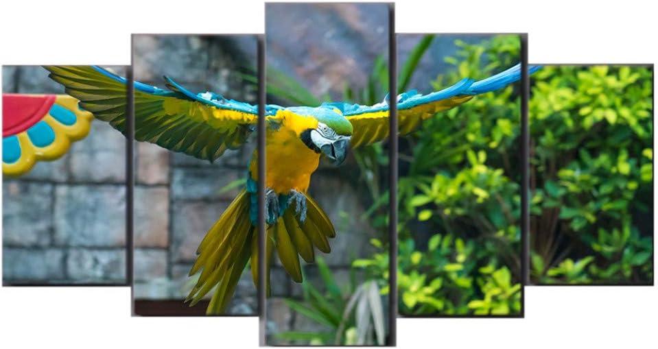 Gbwzz HD Impreso 5 Piezas Lienzo Arte Loro Mascota Pintura Colorida Pluma Pájaro Pared Cuadros para la sala de estar,30x40cmx2pcs,30x60cmx2pcs,30x80cmx1pcs