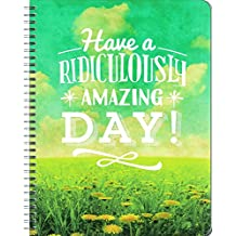 Have a Ridiculously Amazing Day! Large 17 Month Weekly Aug. 2016-Dec. 2017: Large Flexi Planner
