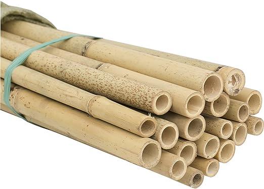 HYF Cañas de bambú para jardín, pack de 10 varillas de bambú de ...