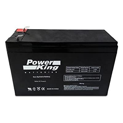 Razor Scooter E300S E300 S Battery Replacement : Sports Scooter Batteries : Sports & Outdoors