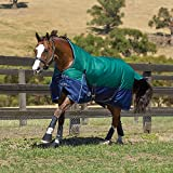 Weatherbeeta Original 1200D High Neck Sheet 78