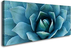 H70750 Canvas Wall Art Sharp Pointed Succulents Plant Leaves Modern Home Decor Stretched and Framed Ready to Hang for Home Office Bedroom Kitchen Decorations Wall Decor