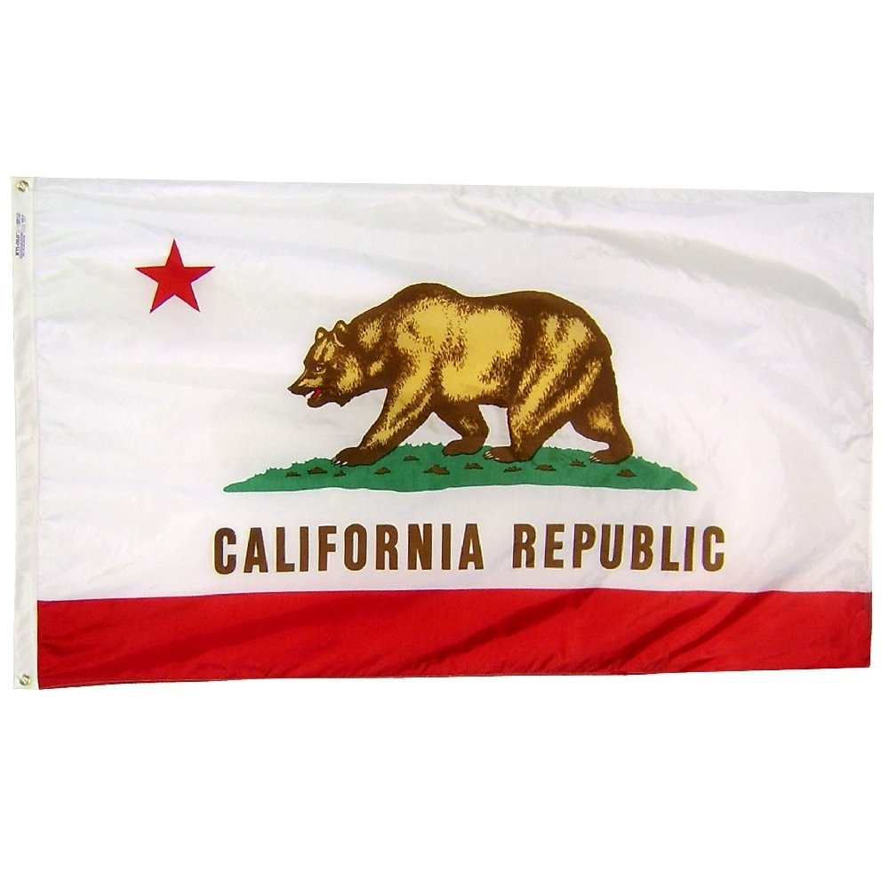 Annin Flagmakers Model 140480 California State Flag Nylon SolarGuard NYL-Glo, 5x8 ft, 100% Made in USA to Official Design Specifications