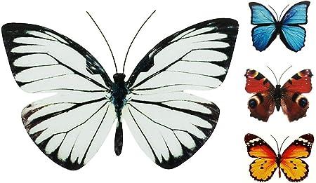 Farbe:Blau Coen Bakker Schmetterling Metall Wand Deko Bunt Garten Wandschmuck Falter Schmetterlinge Gr/ö/ße:30 cm