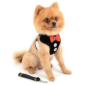SELMAI Chaleco de malla suave para mascotas con arnés y correa ...