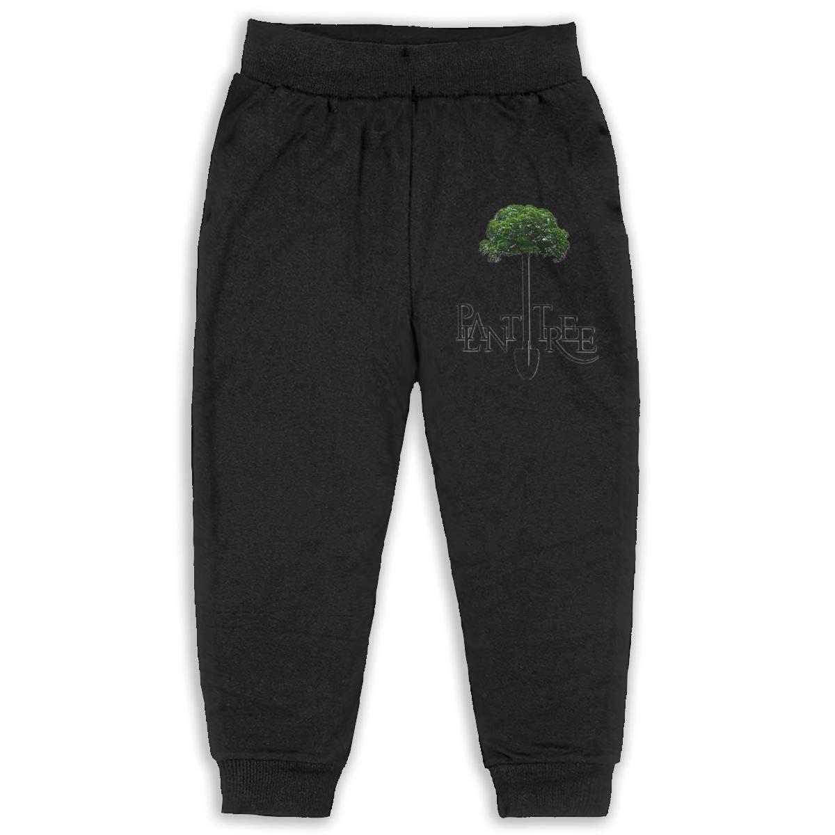 Plant Tree Icon Children Cartoon Cotton Sweatpants Sport Jogger Elastic Pants