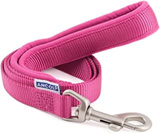 Ancol Padded Nylon Lead Raspberry Pink 1m x 12mm
