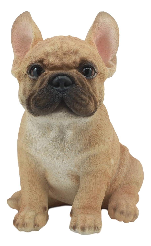 Amazoncom Ebros Realistic Lifelike French Bulldog Puppy Statue 7