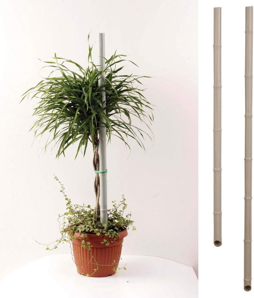 Tutor de caña de plástico/PVC para plantas de hortalizas, poste ...