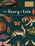 img - for The Story of Life: Evolution (Extended Edition) (Welcome To The Museum) book / textbook / text book