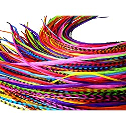 Feather Hair Extensions, 100% Real Rooster Feathers, Long Rainbow Colors, 20 Feathers with Bonus FREE Beads and Loop Tool Kit, By Feather Lily RAIN
