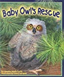Baby Owl's Rescue, Jennifer Keats Curtis, 1607180405