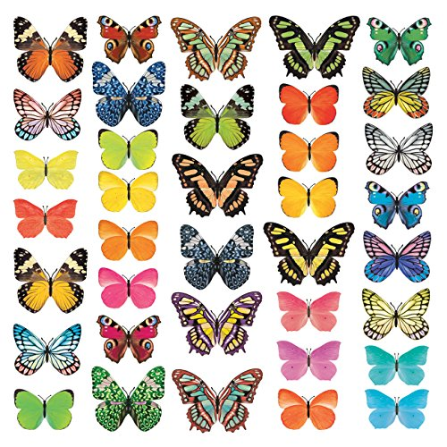 (Decowall DA-1705 Vivid Butterflies Kids Wall Decals Wall Stickers Peel and Stick Removable Wall Stickers for Kids Nursery Bedroom Living Room)