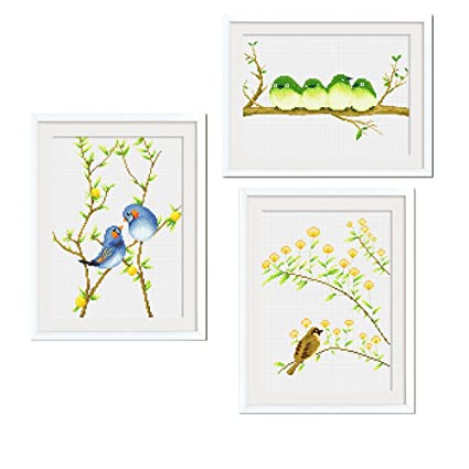 Amazon Cross Stitch Kits For Bird Flowers Eafior 3pcsset Diy