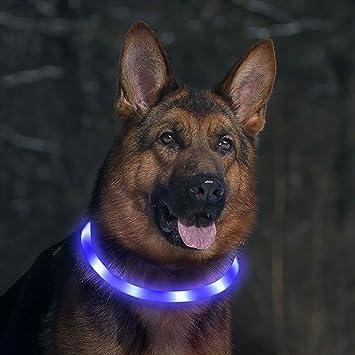 Toozey LED Collar de Perro - luz Continua Durante 20 Horas - Collar de Perro de