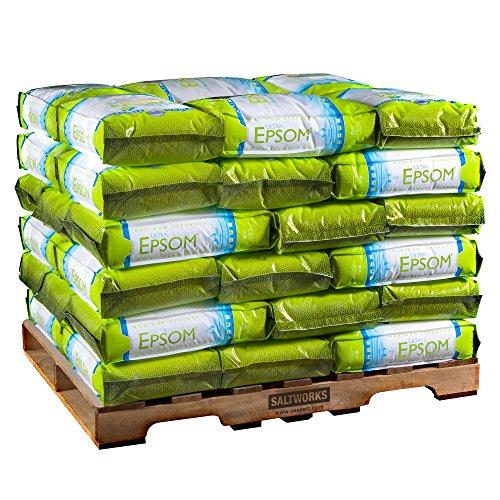 m Salt, USP Grade, Fine Grain, 2,000 Pounds (40 x 50-Pound Bags) ()