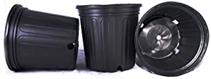 50 NEW Plastic Nursery 2 Gallon Trade POT ~ Actual Volume: 1.593 Gallons by Nursery Supplies