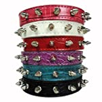GigaMax TM Pet Cat Puppy Dog Collier Chien Row Spiked Studded PU Leather Dog Cat Puppy Collars Size XS S M L
